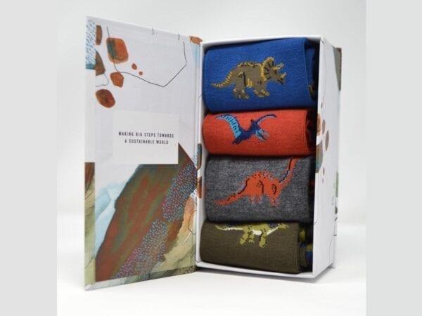 Dinosaurs sock gift box