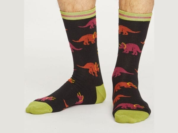 cretaceous bamboo socks